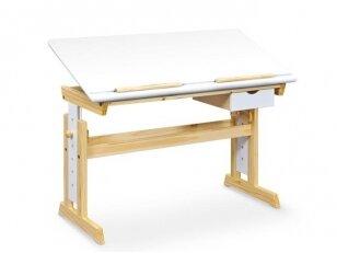 Rašomasis stalas ANAS