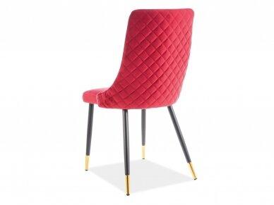 Kėdė SIG1705 8
