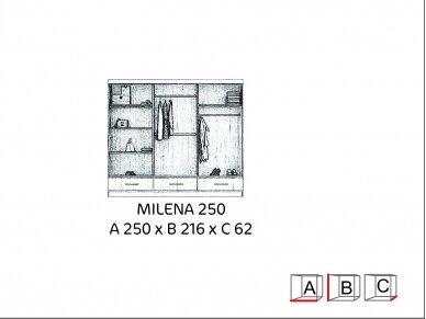 Spinta Milena 9