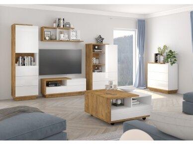Svetainės baldų Komplektas Hybrid 1 5