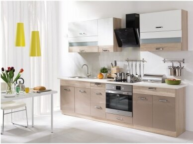 Virtuvės komplektas Premio A